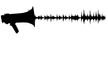 Megaphone and sound waves icon
